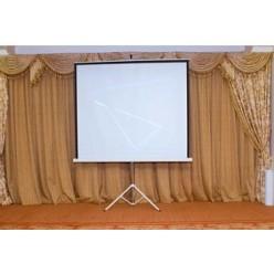 Экран на треноге Projecta 180*180 см